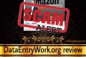 DataEntryWork.org scam review