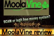 Is MoolaVine a scam review