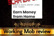 WorkingMob.com review scam