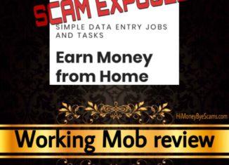 WorkingMob.com review scam