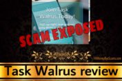 Task Walrus review scam