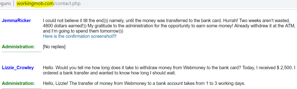 WorkingMob.com review fake comments