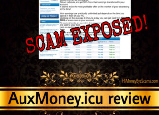 AuxMoney.icu scam review