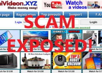 ShiVideon.xyz review scam