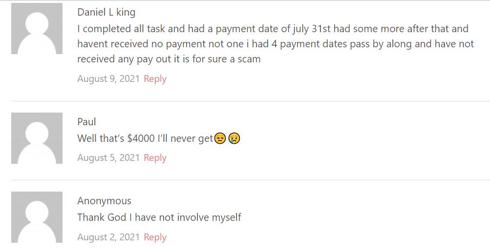 SurveyJ.co review comments